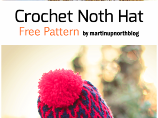Crochet North Hat - Free Pattern