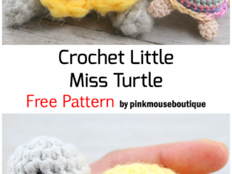 Crochet Little Miss Turtle - Free Pattern